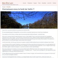 Bien-Être Lyon, Portail de thérapies alternatives à Lyon.
