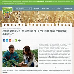 Connaissez-vous les métiers de la collecte et du commerce agricole ?