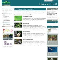 Connaissez-vous la forêt ?