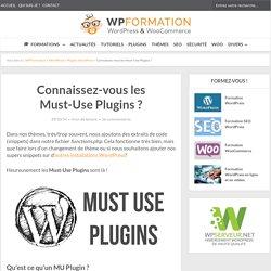 Connaissez-vous les Must-Use Plugins de WordPress ?