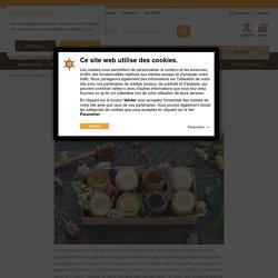 Tout connaître sur les caractéristiques et vertus du miel