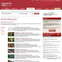 Connaître - Hachette-vins.com : les meilleurs conseils pour acheter un vin, servir un vin, conserver et déguster du vin