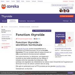 Fonction thyroïde : connaître le rôle des hormones thyroïdiennes