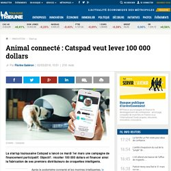 Animal connecté : Catspad veut lever 100 000 dollars