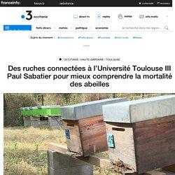 Des ruches connectées à l'Université Toulouse III Paul Sabatier pour mieux comprendre la mortalité des abeilles