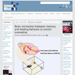 Brain connection between memory and feeding behavior to control overeating