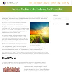 Lectins: The Gluten-Lectin Leaky Gut Connection - Shield Nutraceuticals