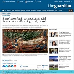 Sleep 'resets' brain connections crucial for memory and learning, study reveals