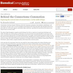 Behind the Connectome Commotion | Biomedical Computation Review