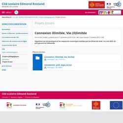 Connexion illimitée, Vie (il)limitée - Projets Ecrans - Lycée Générale et Technique Edmond Rostand