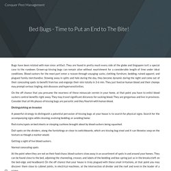 Bed Bugs - Time to Put an End to The Bite!