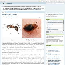 What is Pest Control