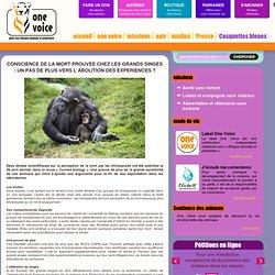 Conscience de la mort prouvée chez les grands singes : un pas de plus vers l'abolition des expériences ?