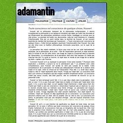 Toute conscience est conscience de quelque chose, Husserl - Adamantin