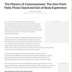 The Physics of Consciousness: The Zero-Point Field, Pineal Gland and Out-of-Body Experience / Evolving Beings