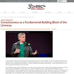 Consciousness as a Fundamental Building Block of the Universe