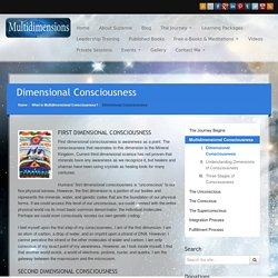 Dimensional Consciousness - Dr. Suzanne Lie and the Arcturians on Multidimensions.com