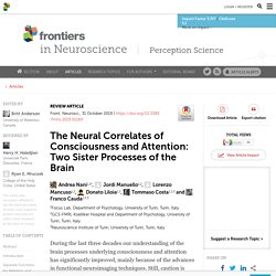 The Neural Correlates of Consciousness and Attention: Two Sister Processes of the Brain