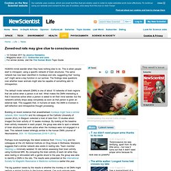 Zoned-out rats may give clue to consciousness - life - 12 October 2011