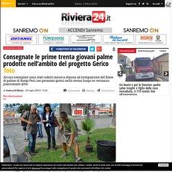 Consegnate le prime trenta giovani palme prodotte nell'ambito del progetto Gerico - Riviera24