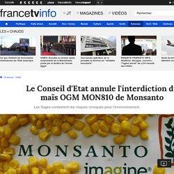 FRANCE TV INFO 15/04/16 Le Conseil d'Etat annule l'interdiction du maïs OGM MON810 de Monsanto Les Sages contestent les risques invoqués pour l'environnement.