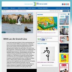 RNR Lac de Grand-Lieu