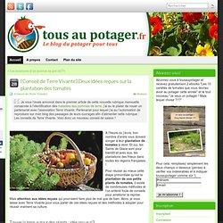 [Conseil de Terre Vivante] Deux idées reçues sur la plantation des tomates