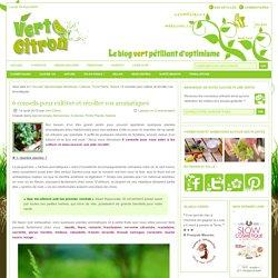 6 conseils pour cultiver et récolter vos aromatiques : Vert-Citron