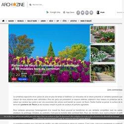 ▷1001+ conseils et exemples de parterres de fleurs magnifique