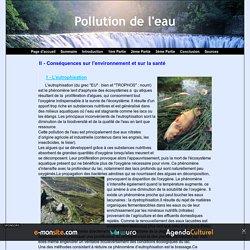 II - Conséquences sur l'environnement et sur la santé