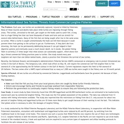 Sea Turtle Threats - Threats from Commercial Fishing