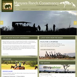 MANYARA RANCH CONSERVANCY - A 35000 ACRE EXCLUSIVE WILDERNESS