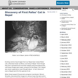 Snow Leopard ConservancySnow Leopard Conservancy