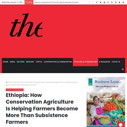 Ethiopia: How Conservation Agriculture Is Helping Farmers Become More Than Subsistence Farmers - The Cooperator News
