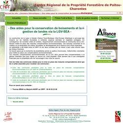 Des aides pour la conservation de boisements et la gestion de landes via la LGV-SEA