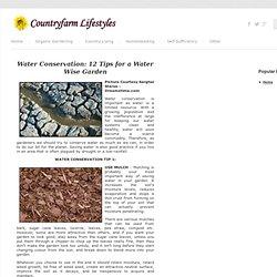 Conserving Water In Your Garden: 12 Tips