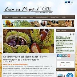 La conservation des légumes par la lacto-fermentation et la déshydratation
