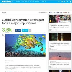 Marine conservation efforts just took a major step forward