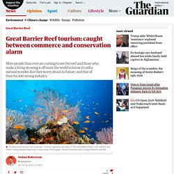 Great Barrier Reef tourism: caught between commerce and conservation alarm