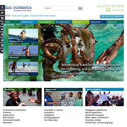 Marine conservation expeditions & volunteer diving expeditions,