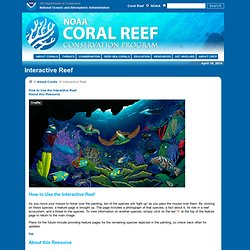 s Coral Reef Conservation Program: Interactive Reef