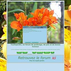Récolte et conservation des plantes médicinales