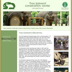 Thai Elephant Conservation Center - Art & Culture - Thai Elephant Orchestra