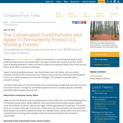 The Conservation Fund Partners with Apple To Permanently Protect U.S. Working Forests