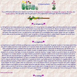 Conservation des herbe: réfrigération, congélation, séchage, etc.