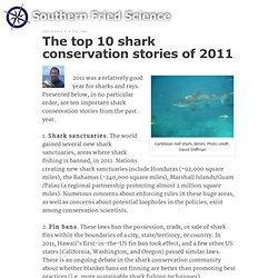 The top 10 shark conservation stories of 2011