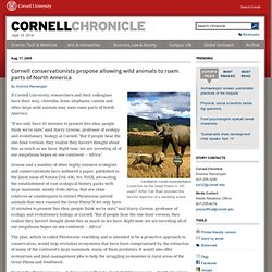 CU researchers propose rewilding