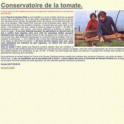 conservatoire de la tomate