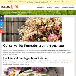 Conserver les fleurs du jardin : le séchage