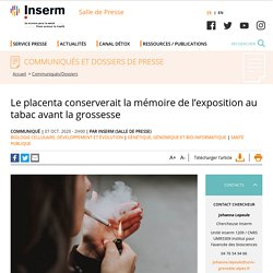 Fumer affecte le placenta des femmes enceintes